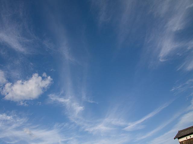 青空 季節の花 淀 フリー写真素材