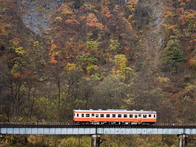 大糸線キハ52と紅葉の写真(フリー素材)