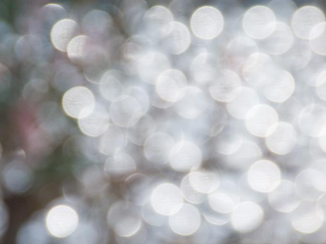 光の輝きの写真(フリー素材)