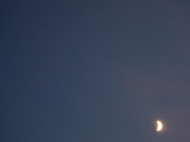 月夜の写真(フリー素材)
