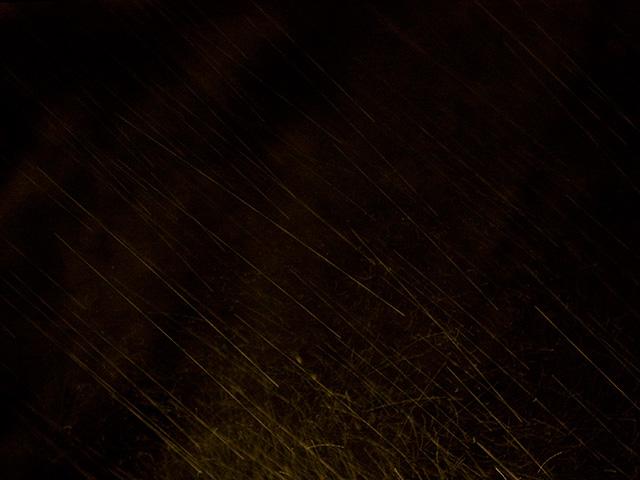 雨の写真(フリー素材)