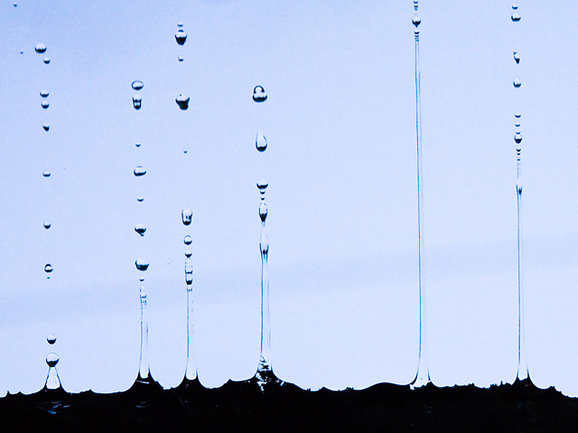 雨の雫(しずく)の写真(フリー素材)
