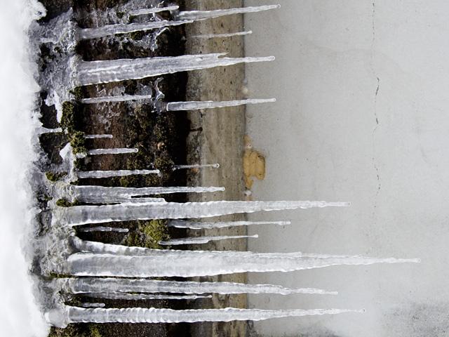 氷柱(つらら)の写真(フリー素材)