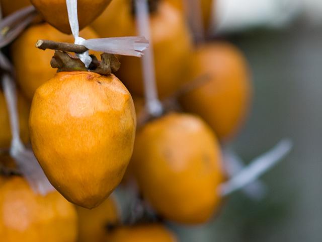 吊るし柿の写真(フリー素材)