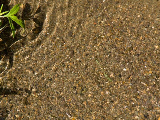 水面の写真(フリー素材)